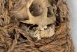 893bc907-96a4-4a5b-81a6-3d8e48951977-Mummy1.PNG